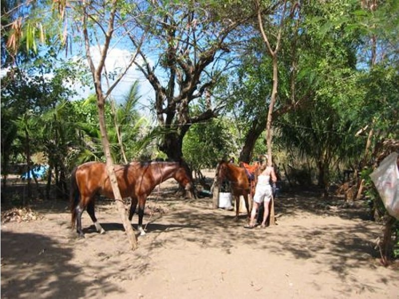 SOLD - Jiquilillo Padre Ramos Beach Farm - Concession Land