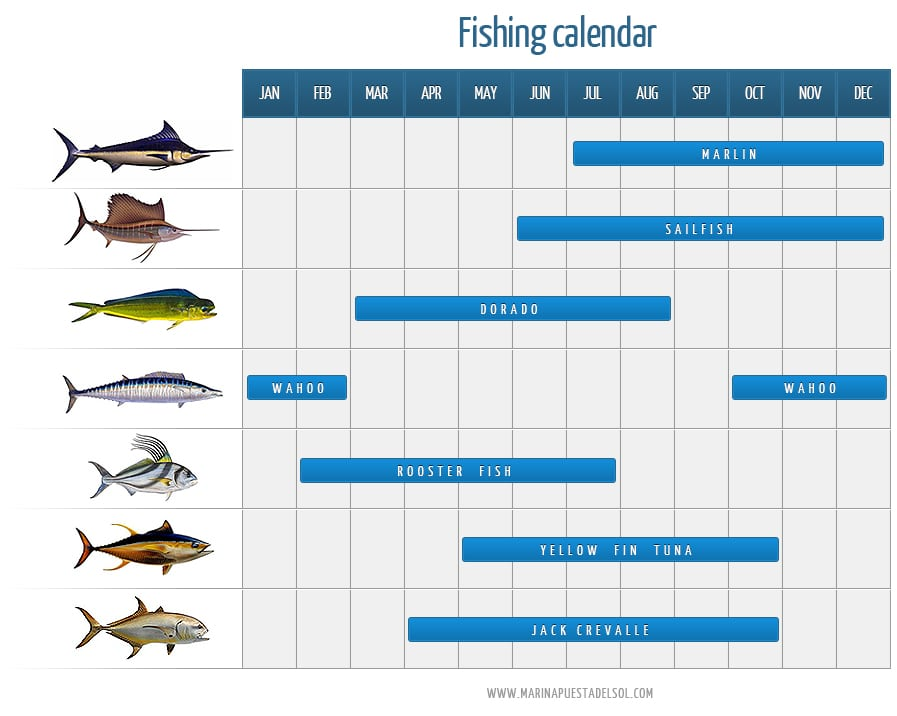 How about fishing nicaragua on the pacific coast for Fishing almanac calendar